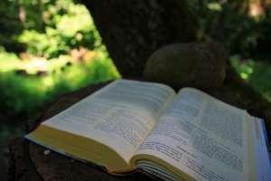 Lectura-creyente-profesionales-cristianos
