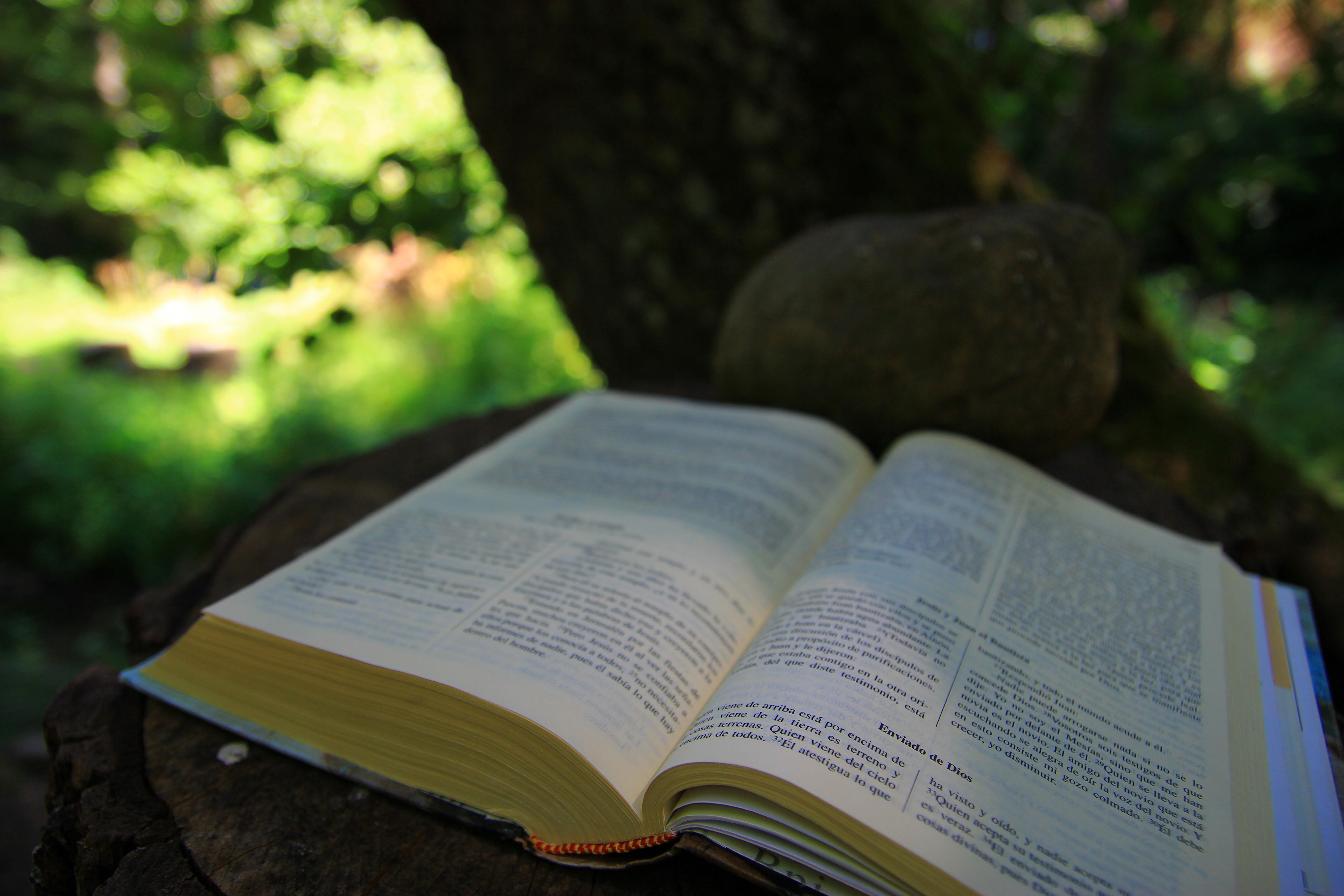 Nuestra presencia evangelizadora en el Mundo Profesional. Guión de Trabajo