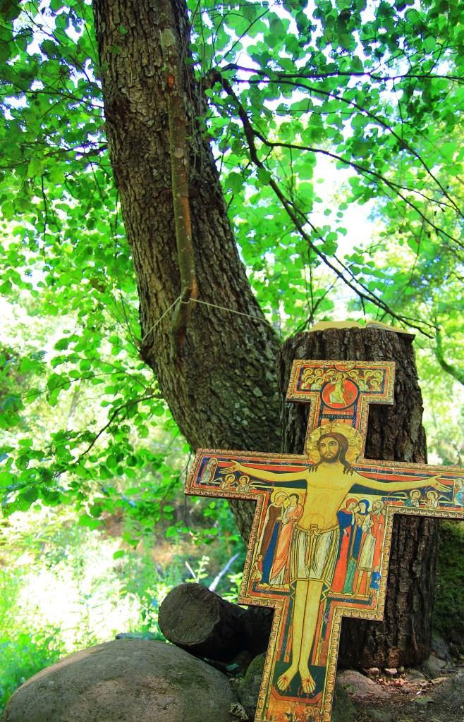 Padre Nuestro que estás en la Selva